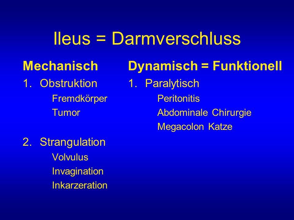Ileus = Darmverschluss Mechanisch 1.Obstruktion Fremdkörper Tumor 2.Strangulation Volvulus Invagination Inkarzeration Dynamisch = Funktionell 1.Paraly