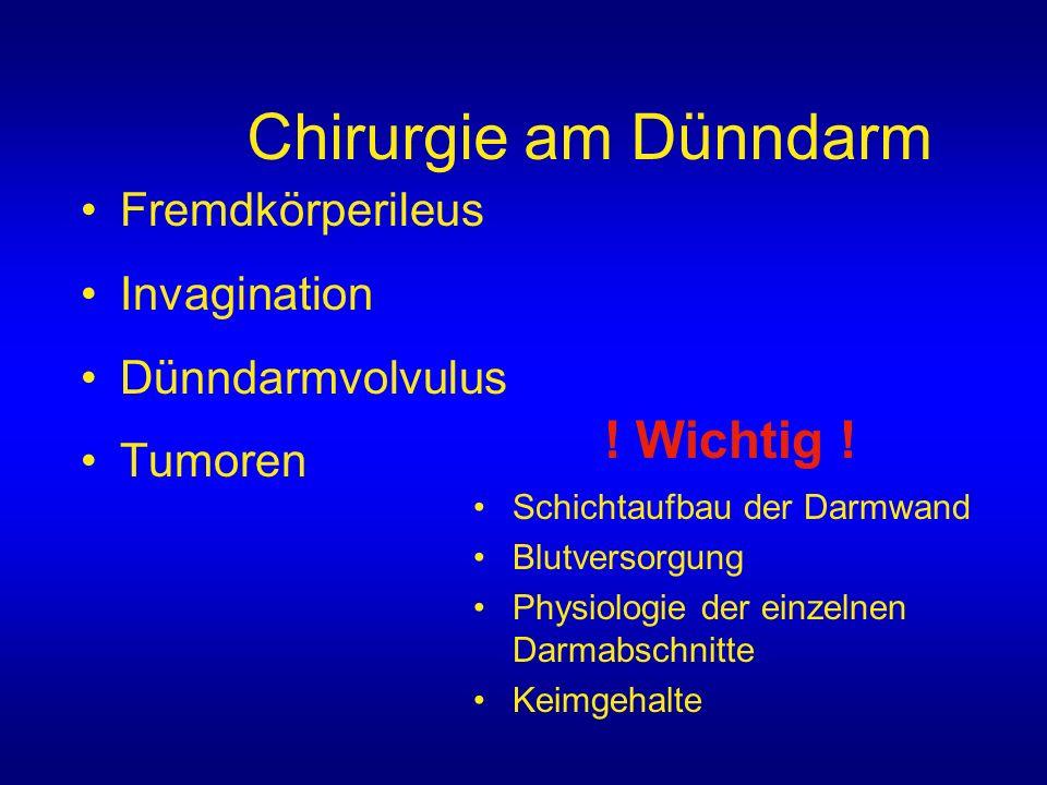 Chirurgie am Dünndarm Fremdkörperileus Invagination Dünndarmvolvulus Tumoren Schichtaufbau der Darmwand Blutversorgung Physiologie der einzelnen Darma