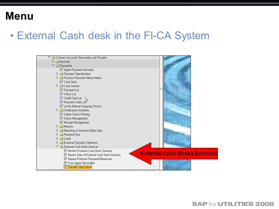 Menu External Cash desk in the FI-CA System External cash Desks Services