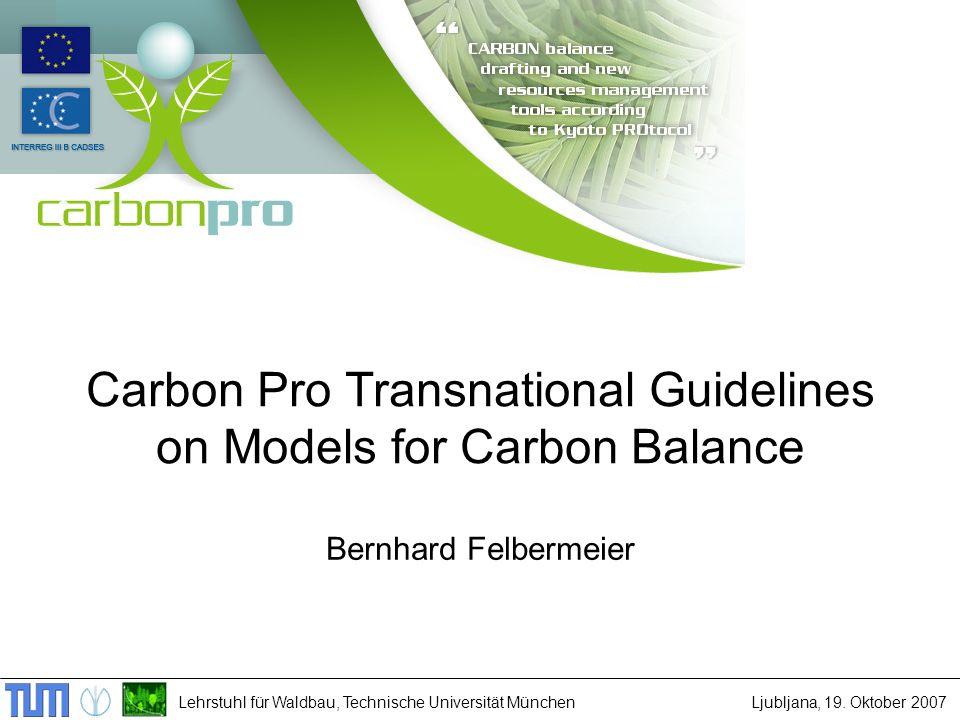 Lehrstuhl für Waldbau, Technische Universität MünchenLjubljana, 19. Oktober 2007 Carbon Pro Transnational Guidelines on Models for Carbon Balance Bern