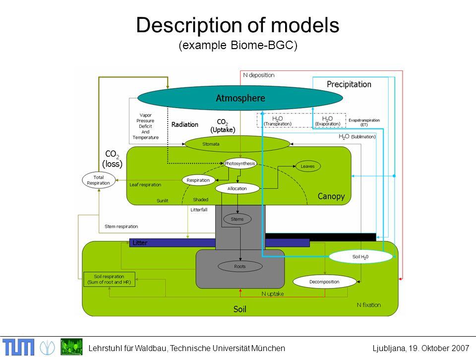 Lehrstuhl für Waldbau, Technische Universität MünchenLjubljana, 19. Oktober 2007 Description of models (example Biome-BGC)