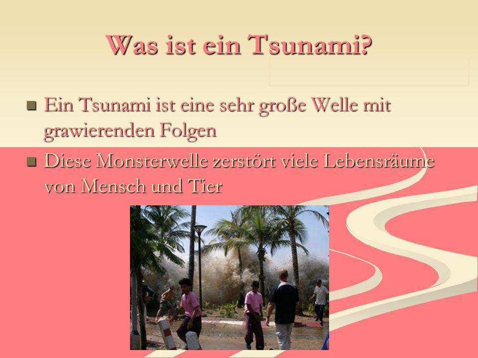 Was ist ein Tsunami? Ein Tsunami ist eine sehr große Welle mit grawierenden Folgen Ein Tsunami ist eine sehr große Welle mit grawierenden Folgen Diese