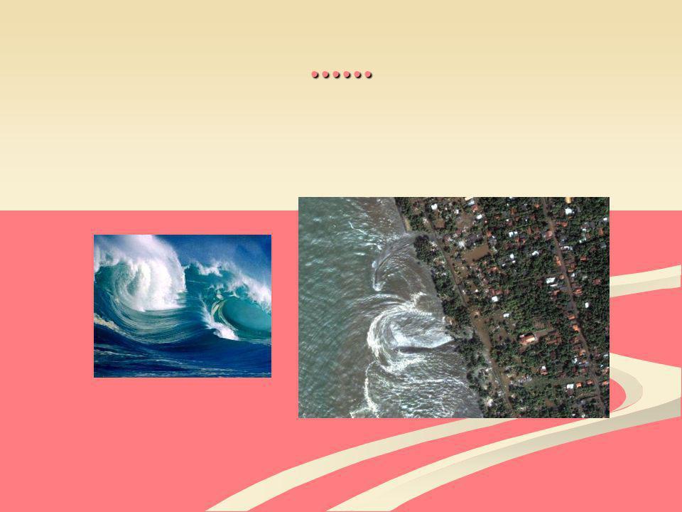 Folgen für Mensch und Tier : Viele Menschen müssen nach einem Tsunami in Armut leben, da ihr ganzer Besitz zerstört wurde.