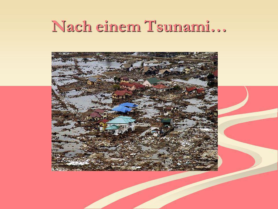 Mehr Info´s Damit ein Tsunami entsteht, muss ein Erdbeben mind.