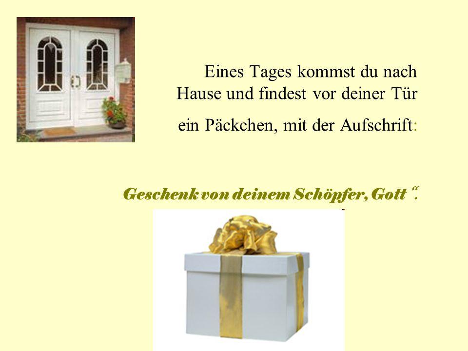 Eines Tages kommst du nach Hause und findest vor deiner Tür ein Päckchen, mit der Aufschrift: Geschenk von deinem Schöpfer, Gott.