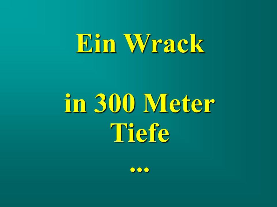 Das Wrack, wie man es von der Oberfläche, aus etwa 300 Metern Höhe sehen würde...