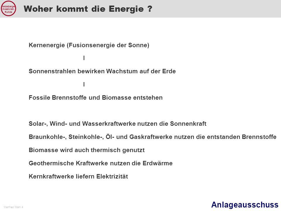 Anlageausschuss Manfred Wahl 4 Heidelberger Investoren- Runde Woher kommt die Energie .