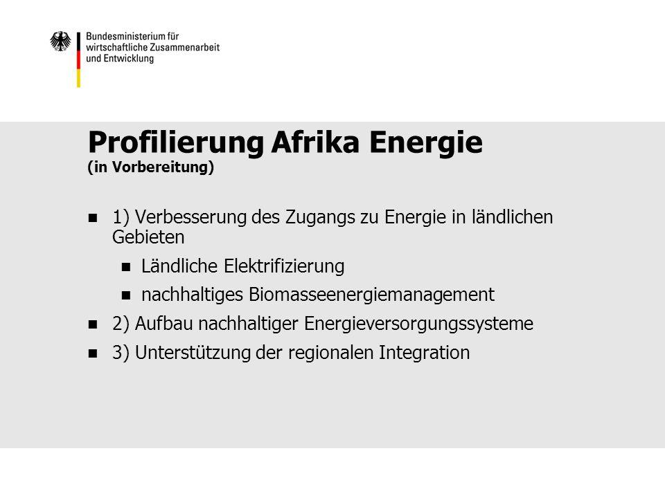 Profilierung Afrika Energie (in Vorbereitung) 1) Verbesserung des Zugangs zu Energie in ländlichen Gebieten Ländliche Elektrifizierung nachhaltiges Biomasseenergiemanagement 2) Aufbau nachhaltiger Energieversorgungssysteme 3) Unterstützung der regionalen Integration