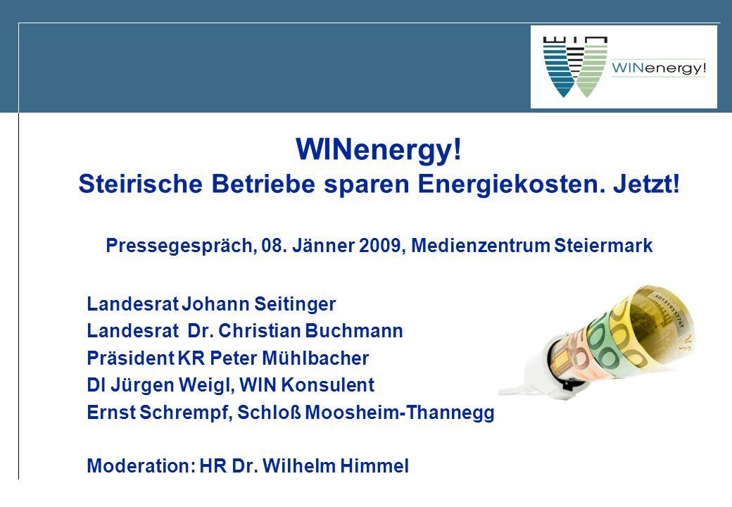 WINenergy! Steirische Betriebe sparen Energiekosten. Jetzt! Pressegespräch, 08. Jänner 2009, Medienzentrum Steiermark Landesrat Johann Seitinger Lande