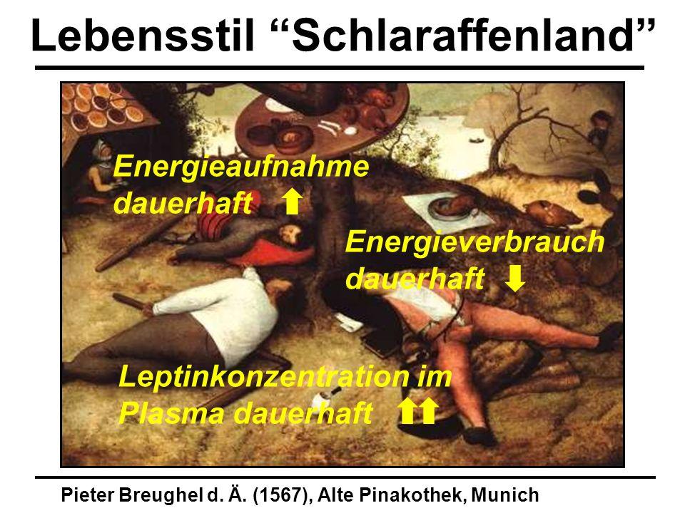 Pieter Breughel d. Ä. (1567), Alte Pinakothek, Munich Lebensstil Schlaraffenland Energieaufnahme dauerhaft Energieverbrauch dauerhaft Leptinkonzentrat