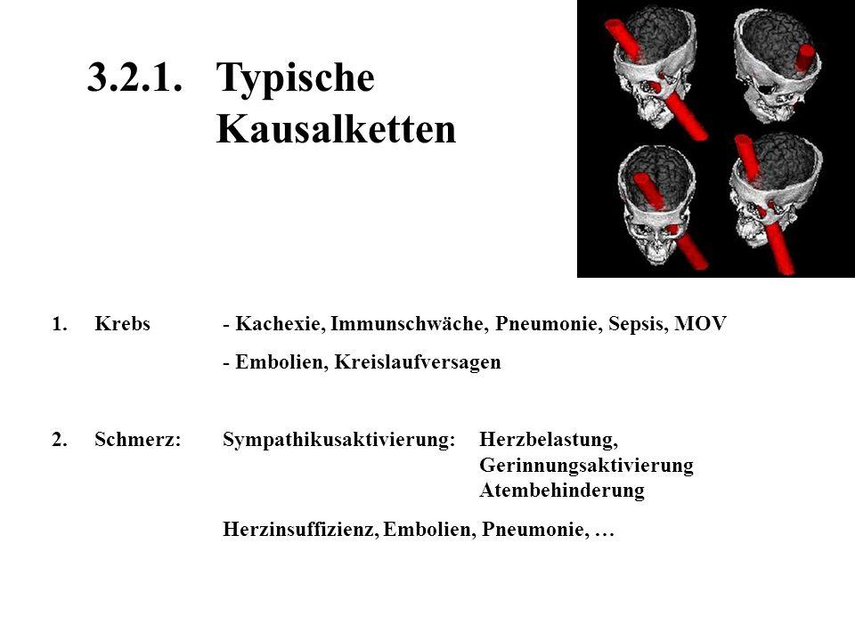 4.Der Patient in Lebensgefahr Symptomkontrolle: Schmerzen Durst Atemnot/Dyspnoe … Maximaltherapie oder