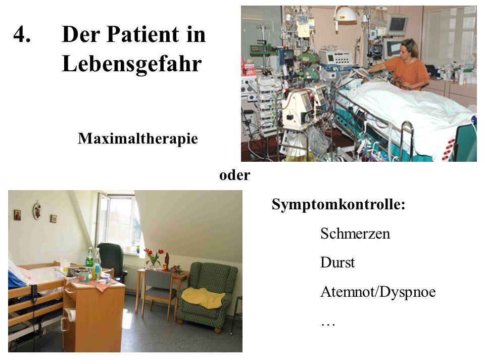 5.Intermediäres Leben Klinischer Tod Individualtod 05´´ 20´´ HerzSpermien Lunge und Leber Niere 1h2h10h Muskeln 3d