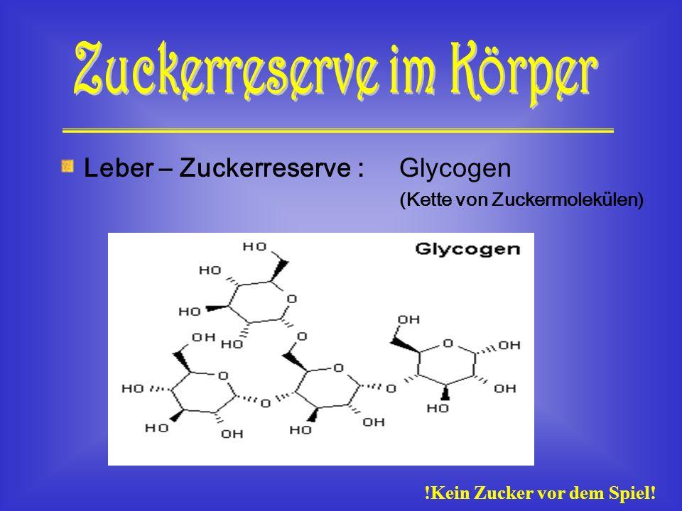 Leber – Zuckerreserve : Glycogen (Kette von Zuckermolekülen) !Kein Zucker vor dem Spiel!