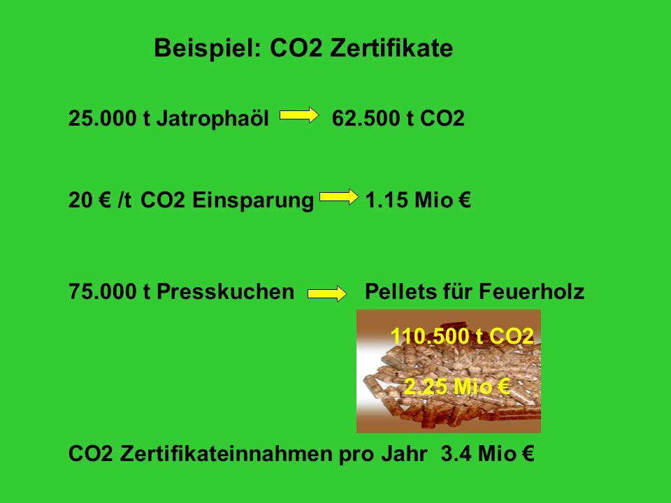 75.000 t Presskuchen 110.500 t CO2 Pellets für Feuerholz 2.25 Mio CO2 Zertifikateinnahmen pro Jahr 3.4 Mio Beispiel: CO2 Zertifikate 25.000 t Jatrophaöl62.500 t CO2 20 /t CO2 Einsparung1.15 Mio
