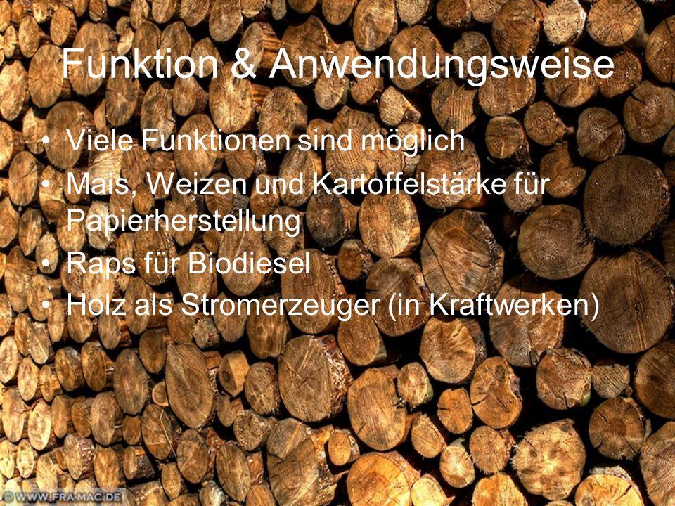 Funktion & Anwendungsweise Viele Funktionen sind möglich Mais, Weizen und Kartoffelstärke für Papierherstellung Raps für Biodiesel Holz als Stromerzeuger (in Kraftwerken)