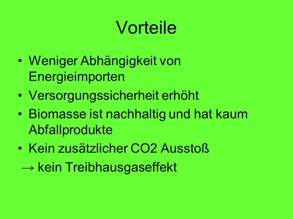 Vorteile Weniger Abhängigkeit von Energieimporten Versorgungssicherheit erhöht Biomasse ist nachhaltig und hat kaum Abfallprodukte Kein zusätzlicher CO2 Ausstoß kein Treibhausgaseffekt
