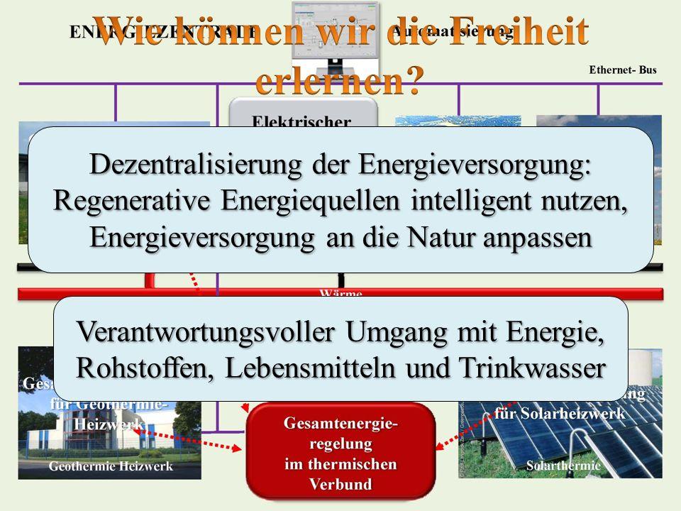 Dezentralisierung der Energieversorgung: Regenerative Energiequellen intelligent nutzen, Energieversorgung an die Natur anpassen Verantwortungsvoller