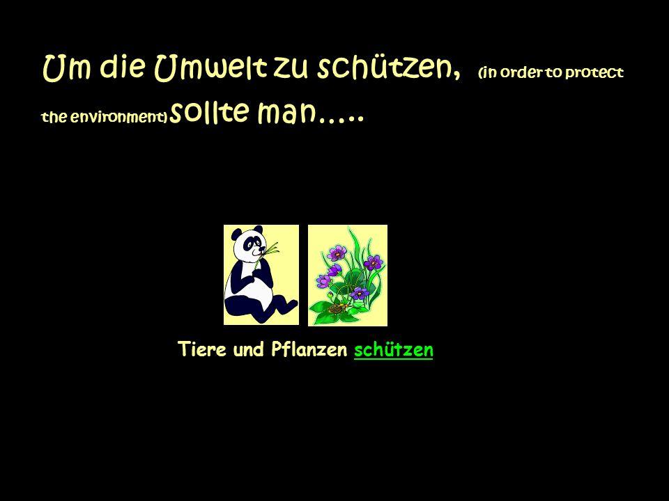 Um die Umwelt zu schützen, (in order to protect the environment) sollte man…..