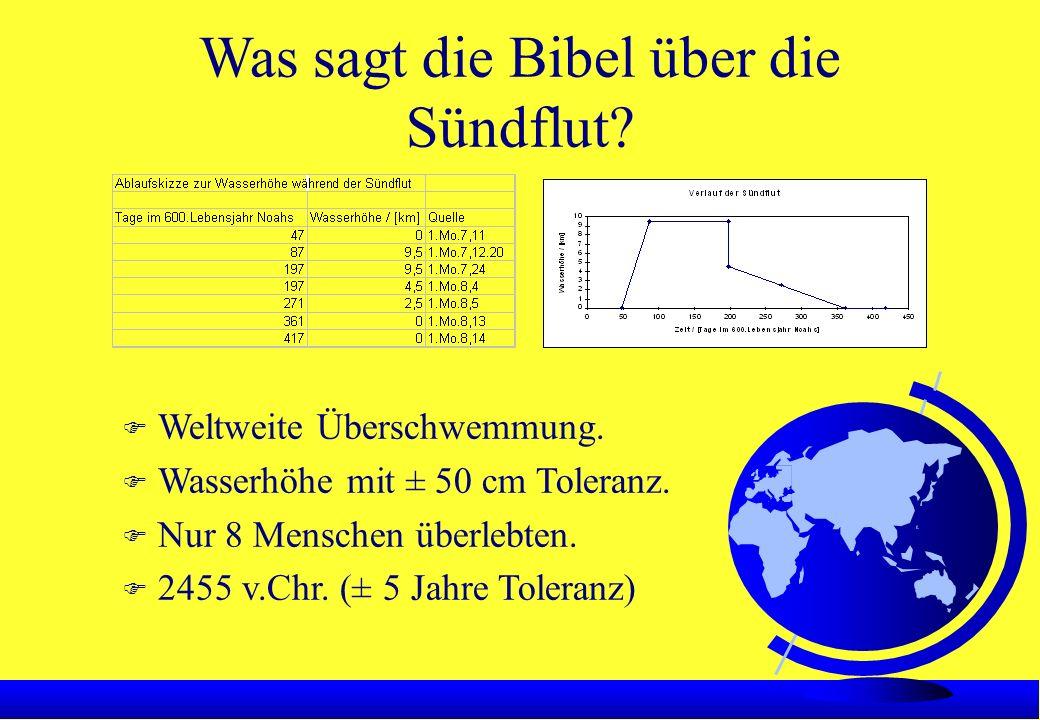 Was sagt die Bibel über die Sündflut. F Weltweite Überschwemmung.