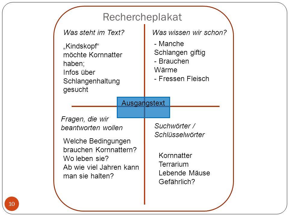 Rechercheplakat 10 Was steht im Text?Was wissen wir schon? Suchwörter / Schlüsselwörter Fragen, die wir beantworten wollen Ausgangstext Kindskopf möch