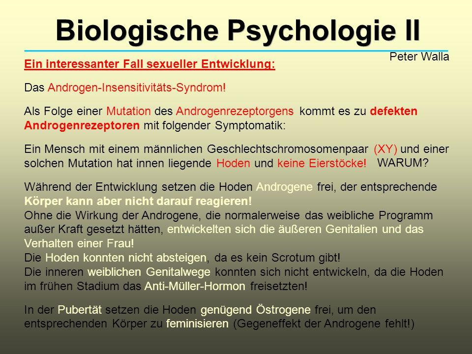 Biologische Psychologie II Peter Walla Ein interessanter Fall sexueller Entwicklung: Das Androgen-Insensitivitäts-Syndrom.