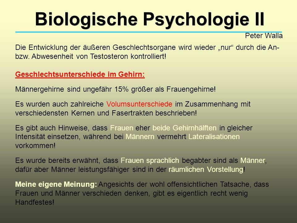 Biologische Psychologie II Peter Walla Die Entwicklung der äußeren Geschlechtsorgane wird wieder nur durch die An- bzw.
