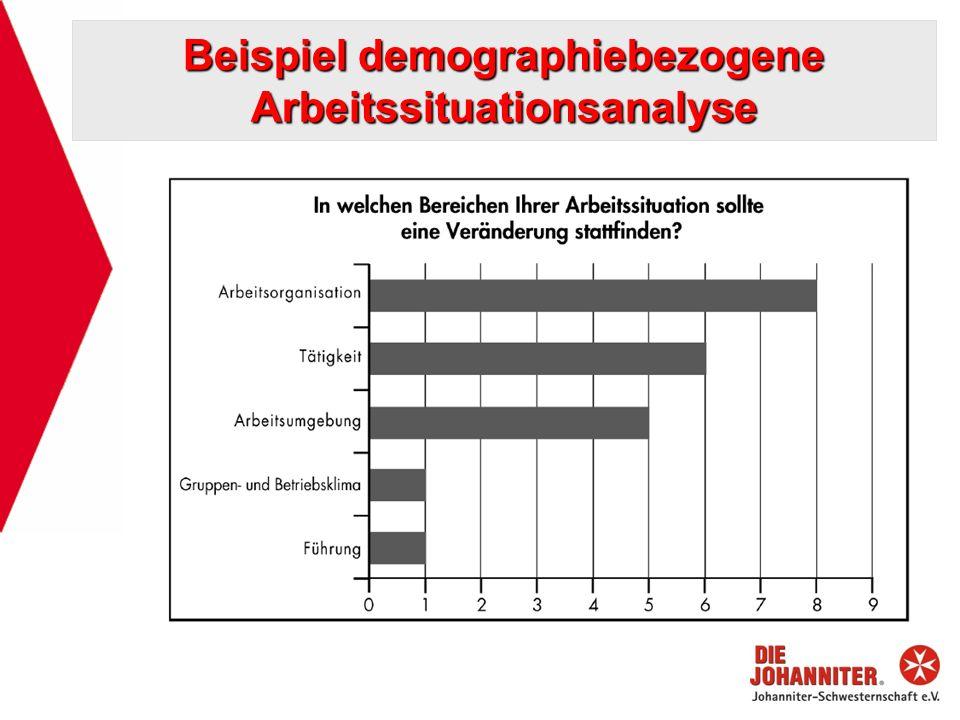 Beispiel demographiebezogene Arbeitssituationsanalyse