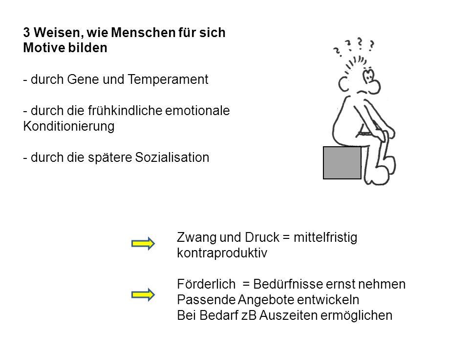 3 Weisen, wie Menschen für sich Motive bilden - durch Gene und Temperament - durch die frühkindliche emotionale Konditionierung - durch die spätere So