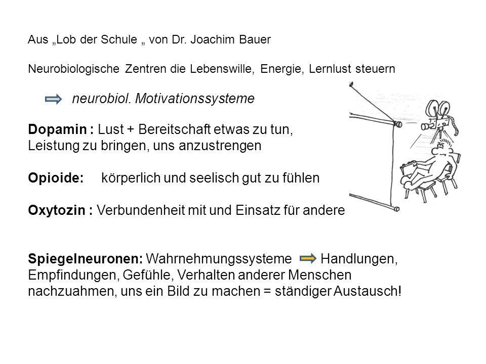 Aus Lob der Schule von Dr. Joachim Bauer Neurobiologische Zentren die Lebenswille, Energie, Lernlust steuern neurobiol. Motivationssysteme Dopamin : L