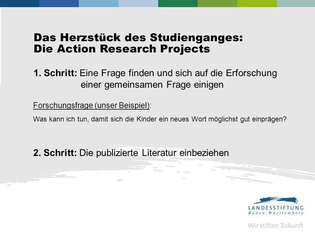 Das Herzstück des Studienganges: Die Action Research Projects 1.