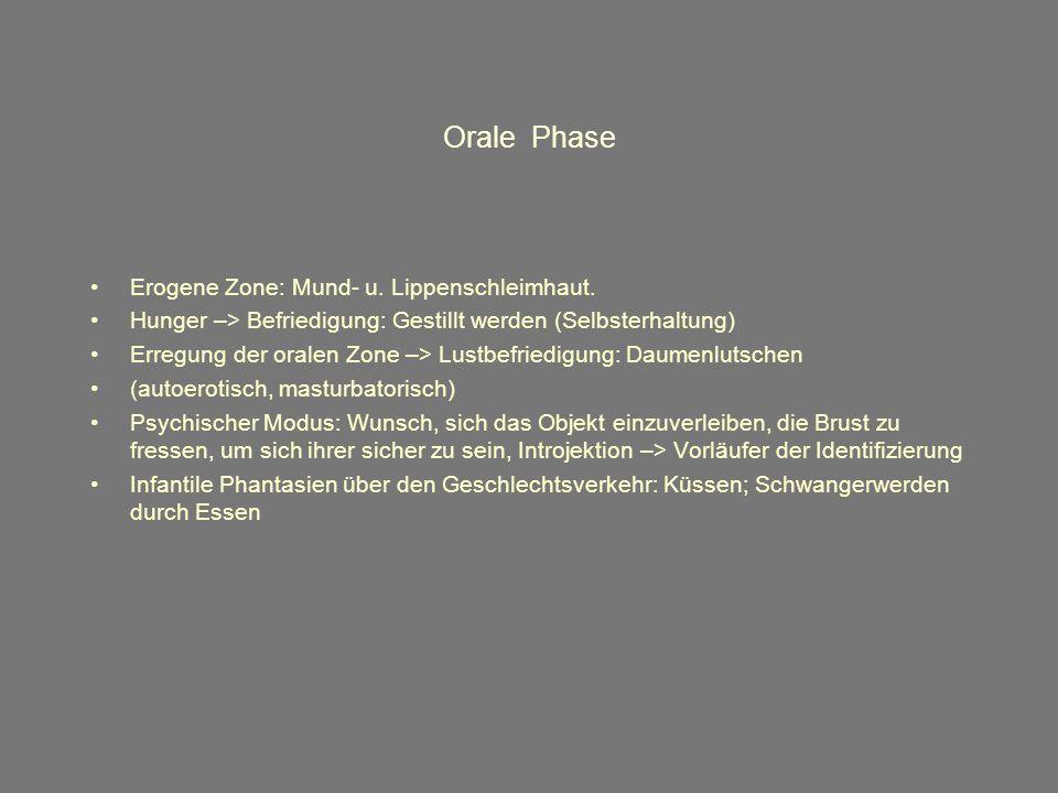 Orale Phase Erogene Zone: Mund- u.Lippenschleimhaut.