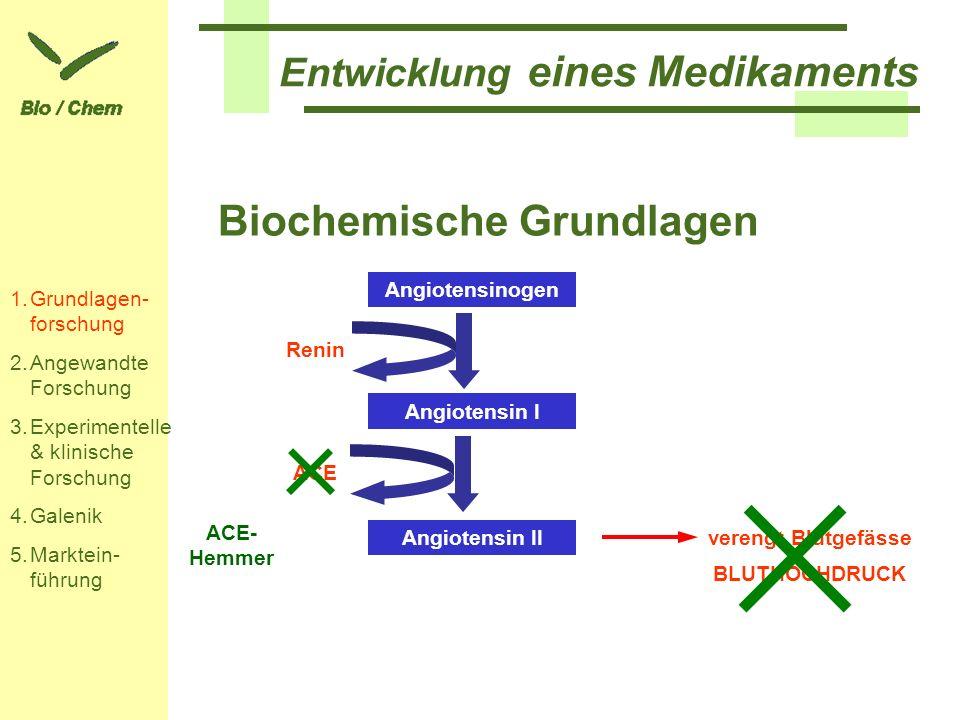 Entwicklung eines Medikaments Biochemische Grundlagen 1.Grundlagen- forschung 2.Angewandte Forschung 3.Experimentelle & klinische Forschung 4.Galenik