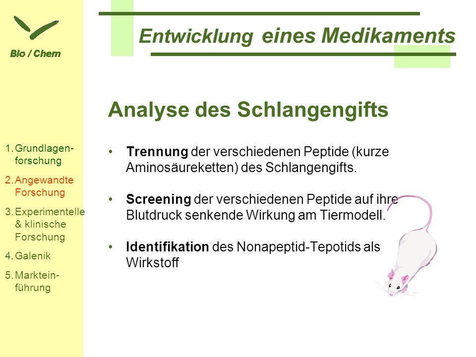 Entwicklung eines Medikaments Analyse des Schlangengifts Trennung der verschiedenen Peptide (kurze Aminosäureketten) des Schlangengifts. Screening der