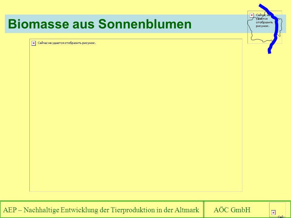 AEP – Nachhaltige Entwicklung der Tierproduktion in der Altmark AÖC GmbH Biomasse aus Sonnenblumen