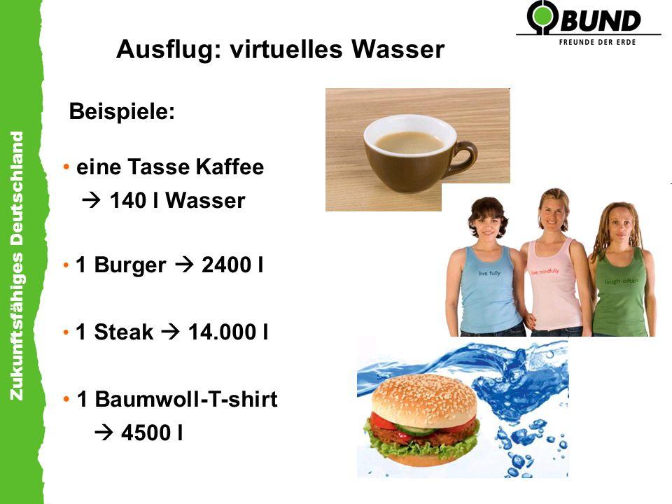 Zukunftsfähiges Deutschland Ausflug: virtuelles Wasser Beispiele: eine Tasse Kaffee 140 l Wasser 1 Burger 2400 l 1 Steak 14.000 l 1 Baumwoll-T-shirt 4