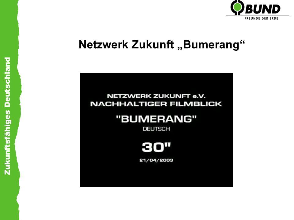 Zukunftsfähiges Deutschland Netzwerk Zukunft Bumerang