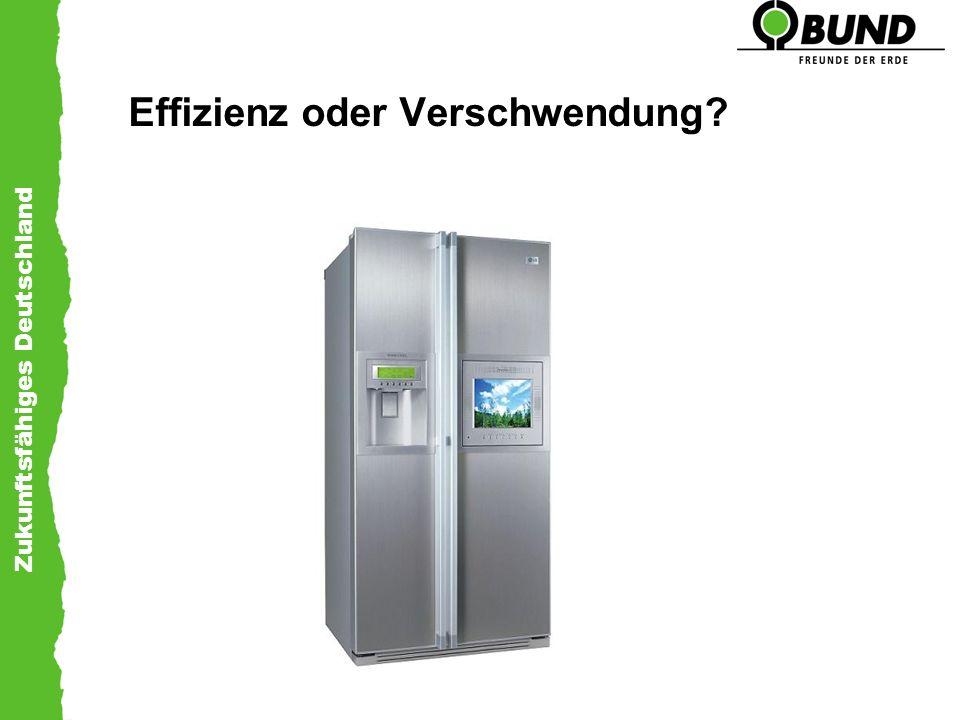 Zukunftsfähiges Deutschland Effizienz oder Verschwendung?
