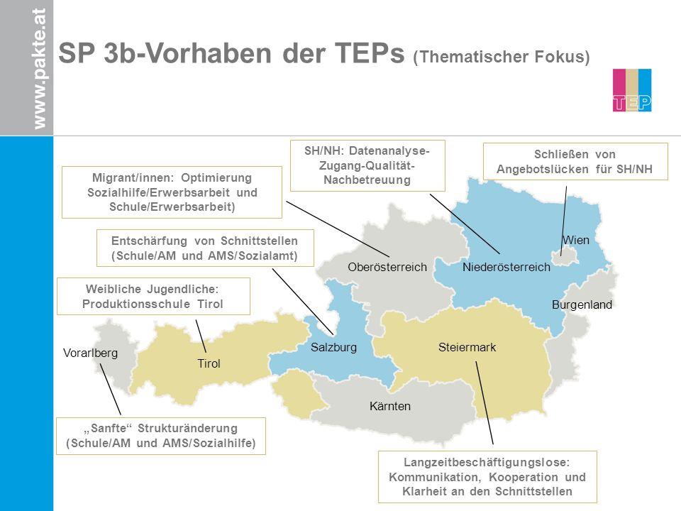 Tirol Burgenland Vorarlberg Salzburg OberösterreichNiederösterreich Steiermark Kärnten Wien SP 3b-Vorhaben der TEPs (Thematischer Fokus) Langzeitbesch
