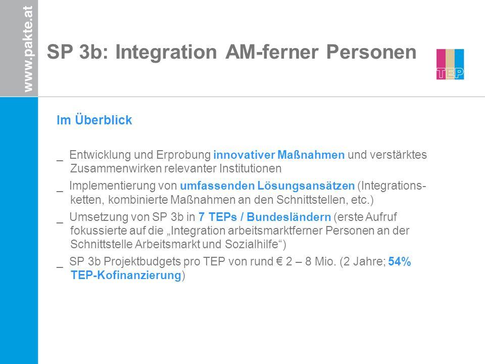 SP 3b: Integration AM-ferner Personen Im Überblick _ Entwicklung und Erprobung innovativer Maßnahmen und verstärktes Zusammenwirken relevanter Institu