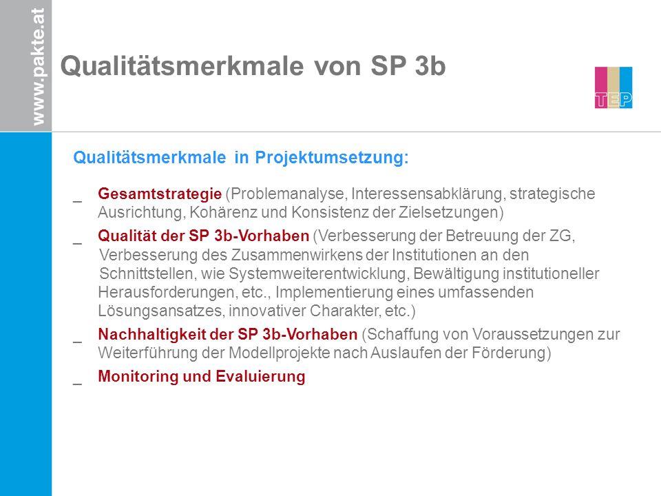 Qualitätsmerkmale von SP 3b Qualitätsmerkmale in Projektumsetzung: _Gesamtstrategie (Problemanalyse, Interessensabklärung, strategische Ausrichtung, K