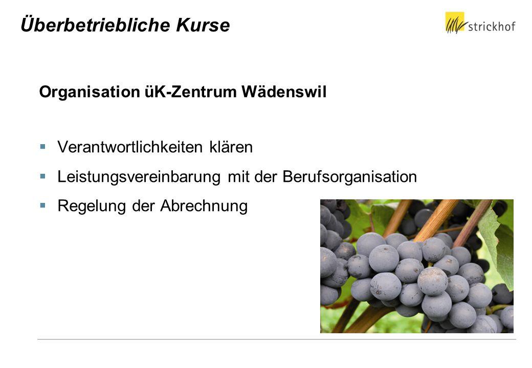 Organisation üK-Zentrum Wädenswil Verantwortlichkeiten klären Leistungsvereinbarung mit der Berufsorganisation Regelung der Abrechnung Überbetrieblich