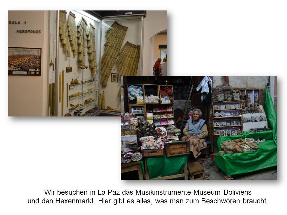 Wir besuchen in La Paz das Musikinstrumente-Museum Boliviens und den Hexenmarkt.
