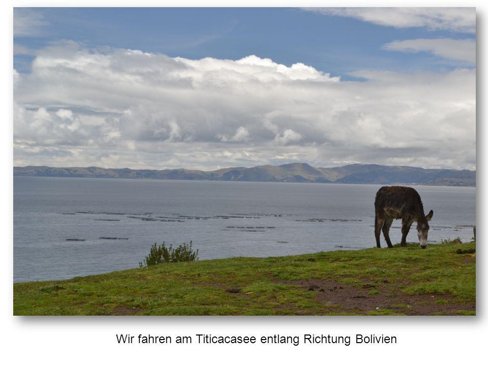 Wir fahren am Titicacasee entlang Richtung Bolivien
