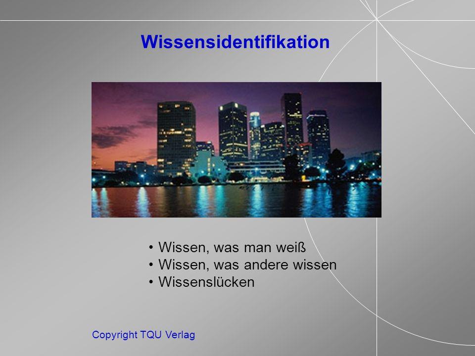 Copyright TQU Verlag Wissen, was man weiß Wissen, was andere wissen Wissenslücken Wissensidentifikation