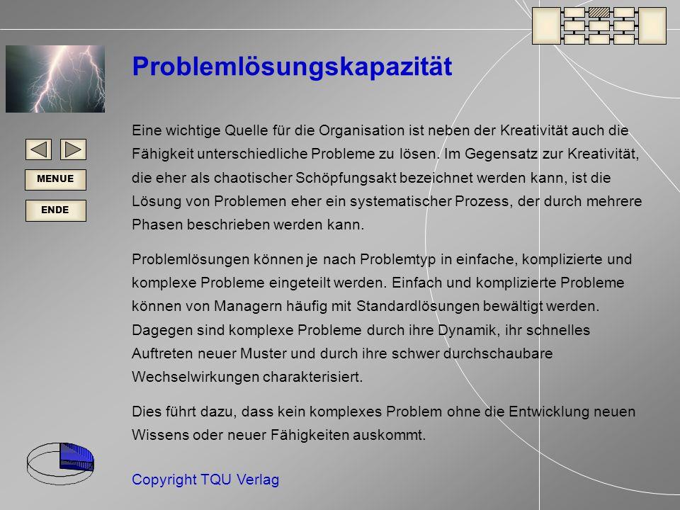 ENDE MENUE Copyright TQU Verlag Problemlösungskapazität Eine wichtige Quelle für die Organisation ist neben der Kreativität auch die Fähigkeit unterschiedliche Probleme zu lösen.