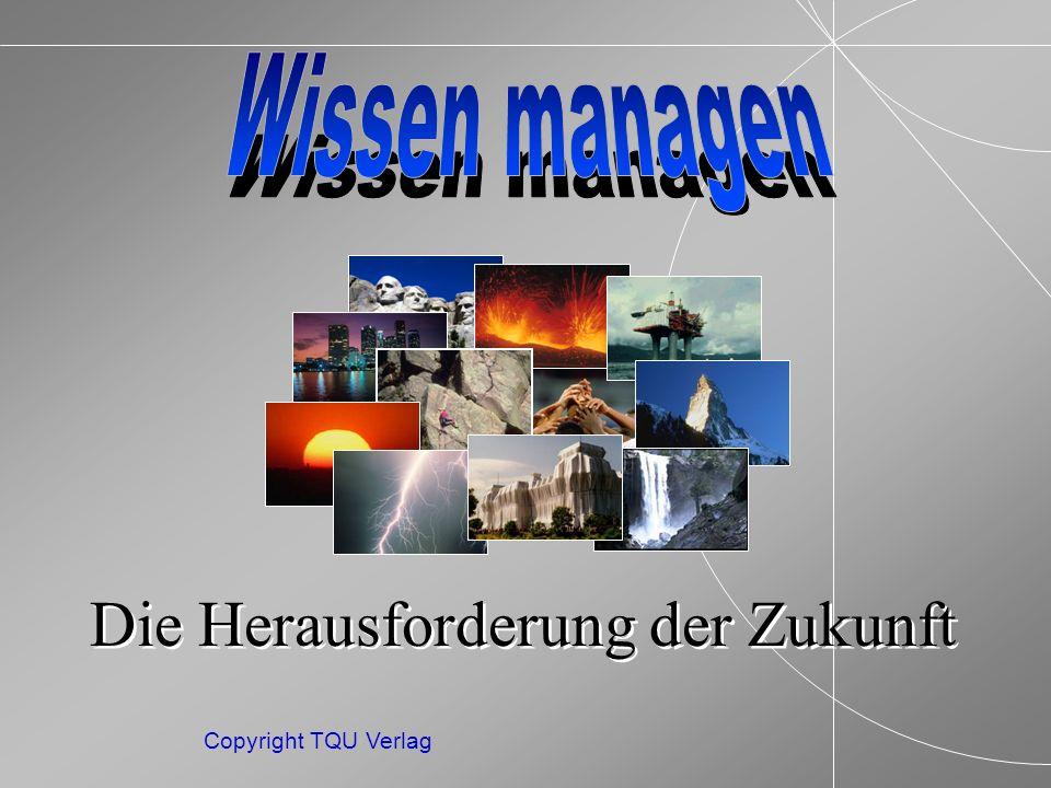ENDE MENUE Copyright TQU Verlag brachliegende Fähigkeiten Angewandt.