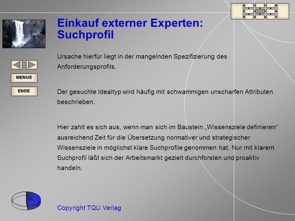 ENDE MENUE Copyright TQU Verlag Einkauf externer Experten: Suchprofil Ursache hierfür liegt in der mangelnden Spezifizierung des Anforderungsprofils.