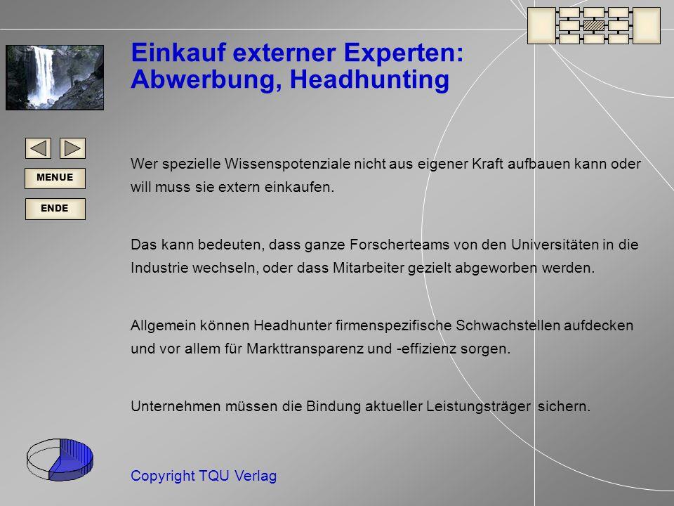 ENDE MENUE Copyright TQU Verlag Einkauf externer Experten: Abwerbung, Headhunting Wer spezielle Wissenspotenziale nicht aus eigener Kraft aufbauen kann oder will muss sie extern einkaufen.