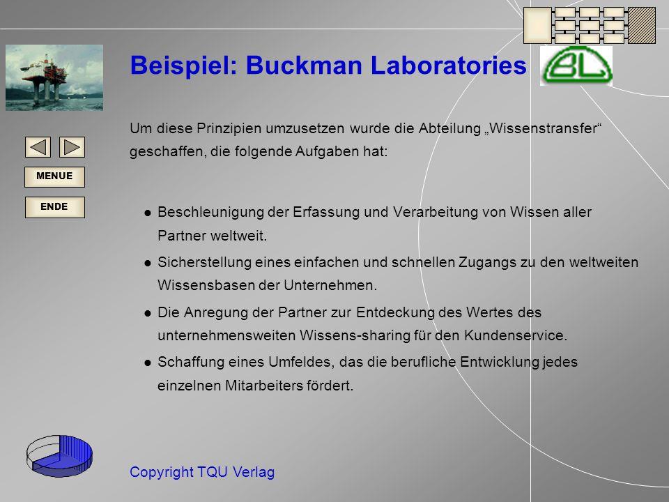 ENDE MENUE Copyright TQU Verlag Beispiel: Buckman Laboratories Um diese Prinzipien umzusetzen wurde die Abteilung Wissenstransfer geschaffen, die folgende Aufgaben hat: Beschleunigung der Erfassung und Verarbeitung von Wissen aller Partner weltweit.
