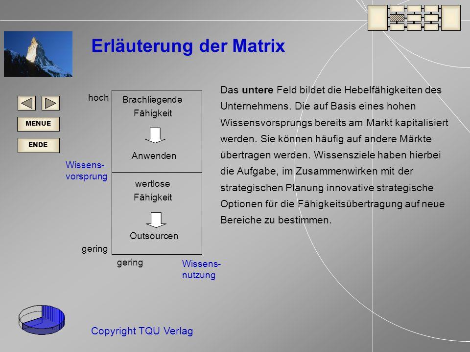 ENDE MENUE Copyright TQU Verlag Erläuterung der Matrix Das untere Feld bildet die Hebelfähigkeiten des Unternehmens.